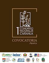 CONVOCATORIA ABIERTA-1er CONGRESO NACIONAL DE SABERES Y CONOCIMIENTOS EN CAÑAHUA