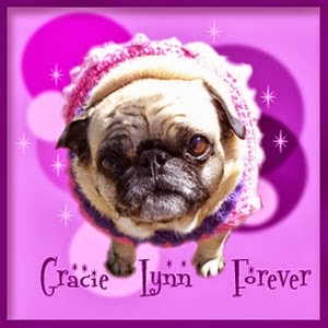 Run Free Gracie Lynn