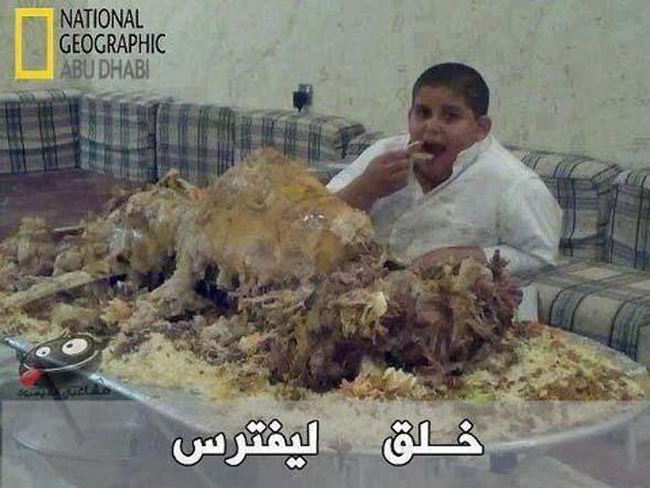 الطفل والبطيخ هههههههههههههه  574807_496972797034964_846837379_n
