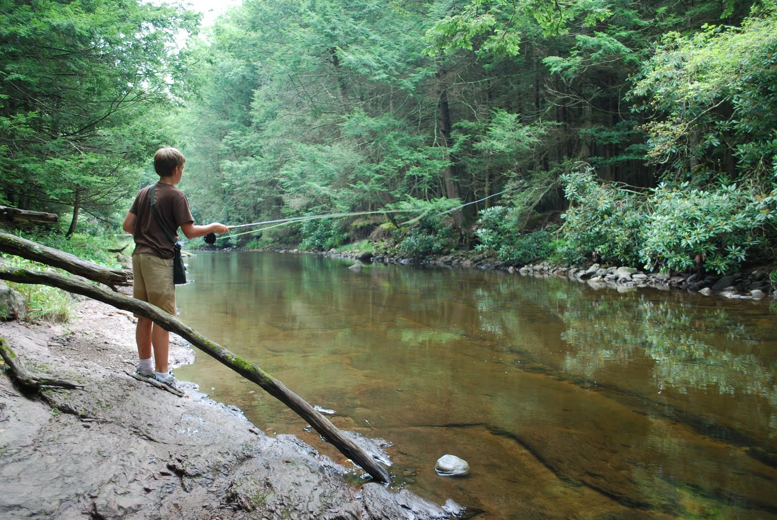 Litton 39 s fishing lines novices fly fish the flatbrook for Nj fly fishing