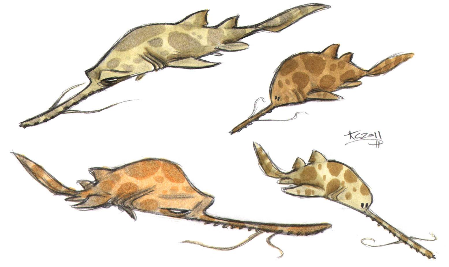 shark week sketch jam longnose sawshark