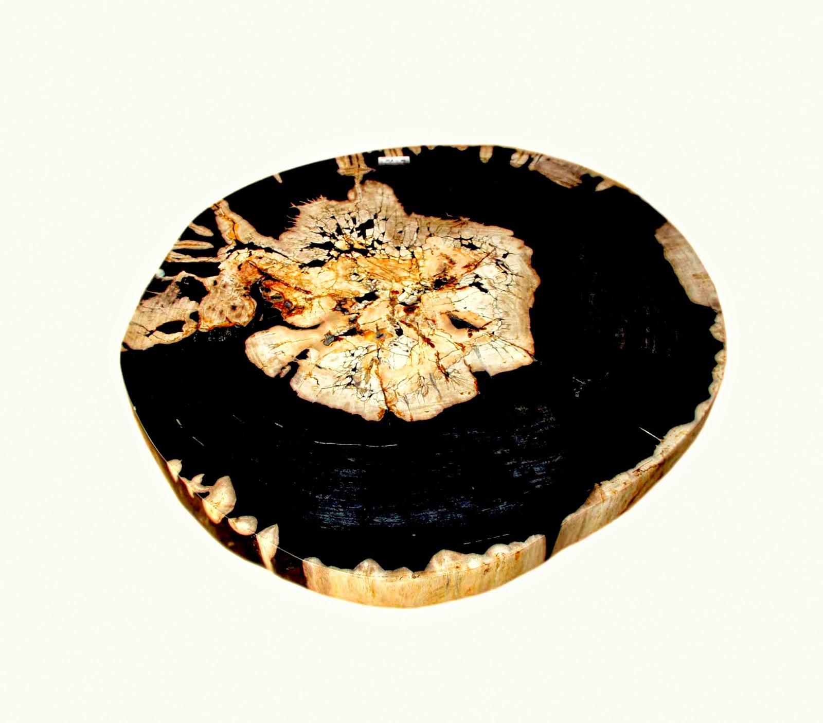 Petrified wood table tops tablas de f siles de madera indogemstone for Tablas de madera