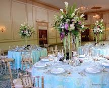 Beautiful Hotel Ballrooms