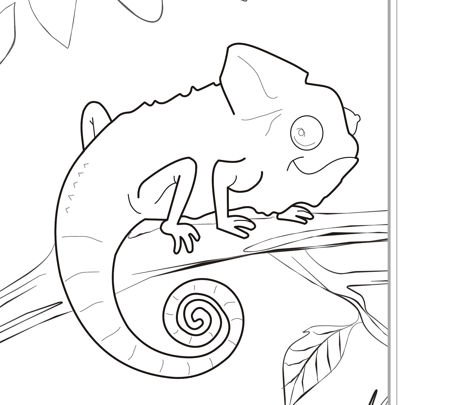 Free coloring pictures zoo animals - Coloring Pages Zoo Iguanas