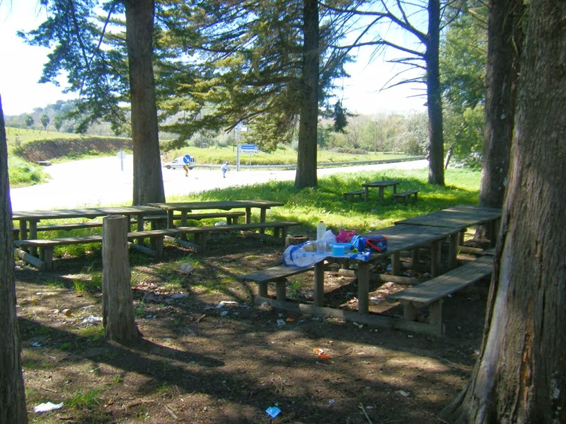 Mesas Parque Merendas montemor-o-novo