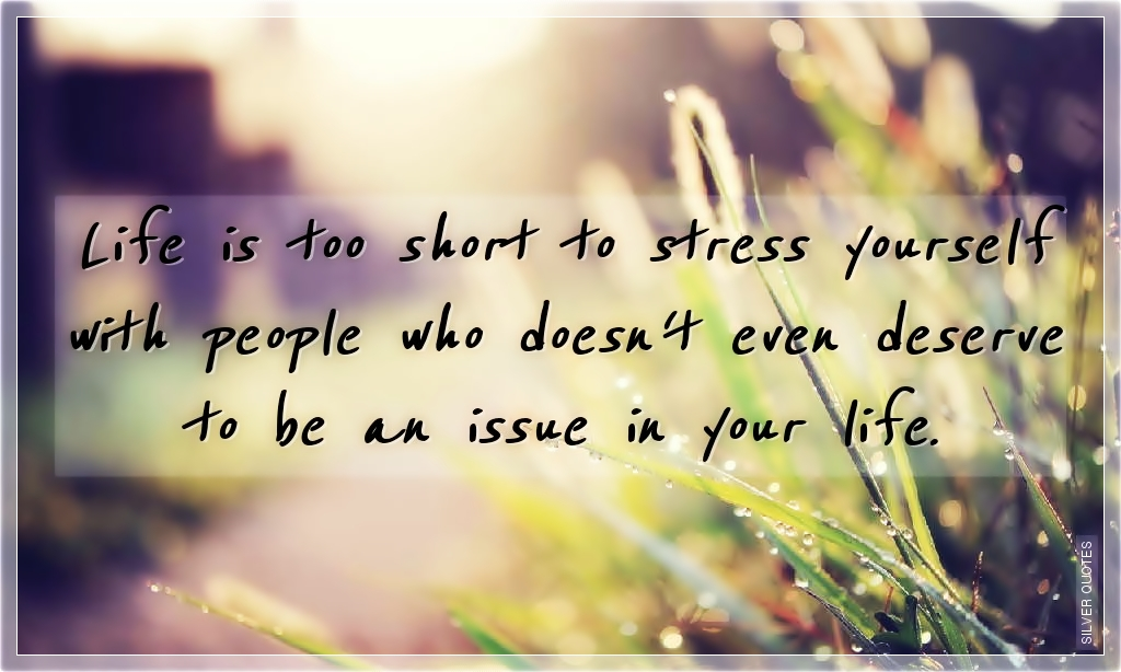 like is too short to stress yourself silver quotes