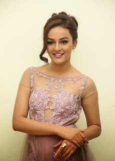 Actress Seerat Kapoor Pictures in Long Dress at Tiger Audio Launch 5.JPG