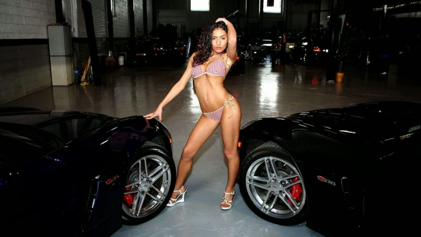 girl in car show sexs