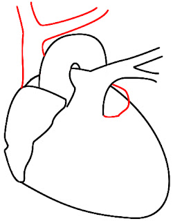 How To Draw A Heart Step 9