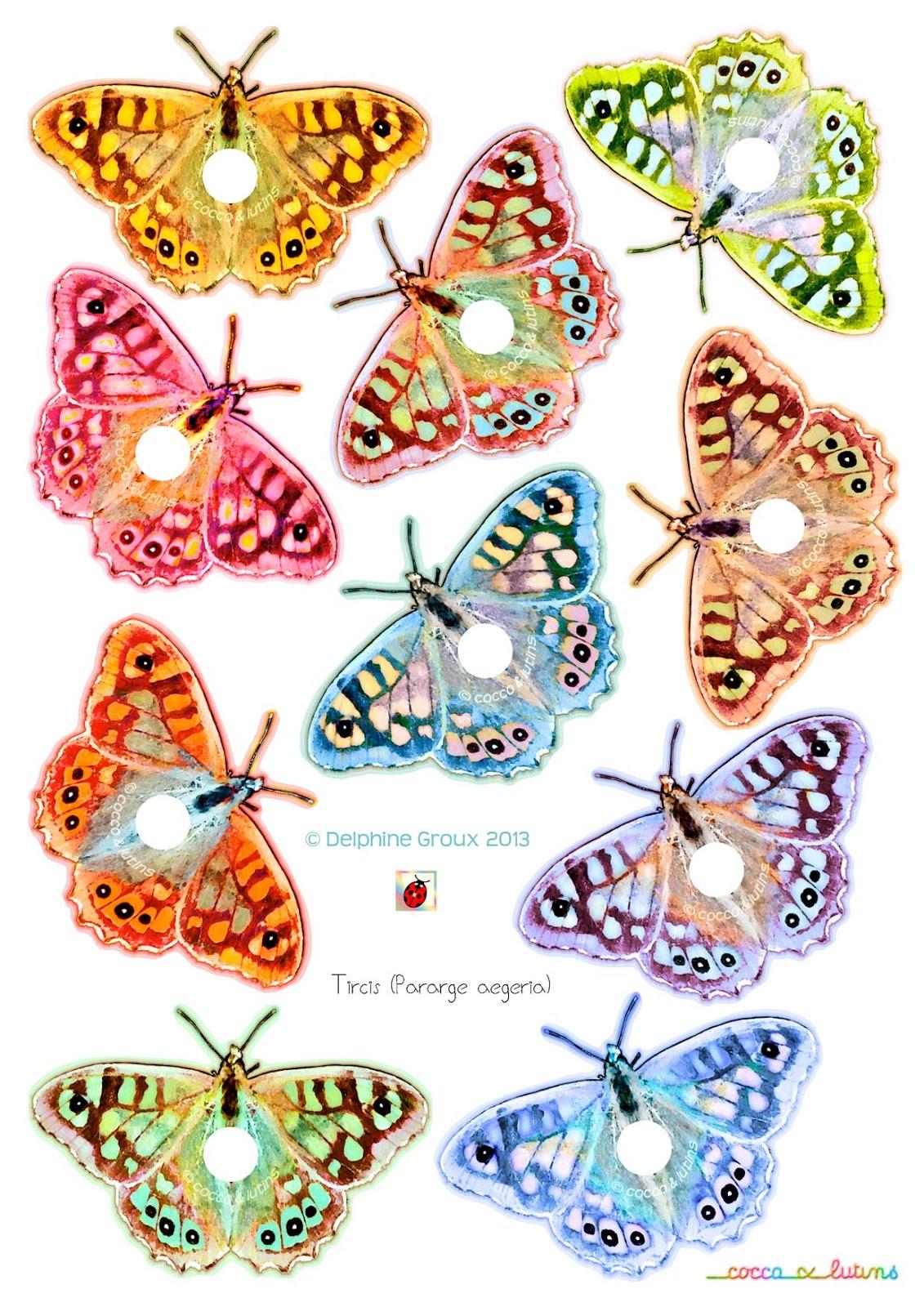 Cocco lutins marque verre les papillons d 39 alissandre - Dessin papillon a decouper ...