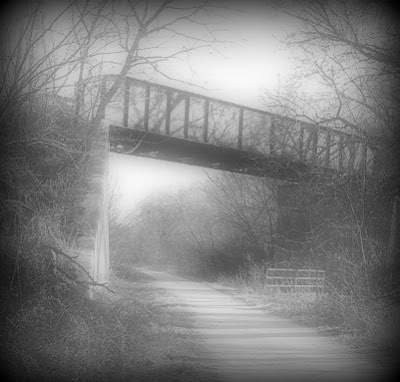 In the late 1800s a train derailment at the bridge that crosses Salt Creek near Lincoln, Nebraska left almost a dozen dead.  Many claim those lost souls still roam Wilderness Park to this day.
