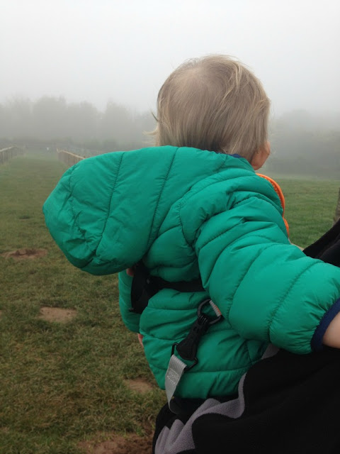 picture of the back of a toddler looking into the fog