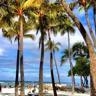 Waikiki Beach Hawaii (Best Honeymoon Destinations In USA) 3