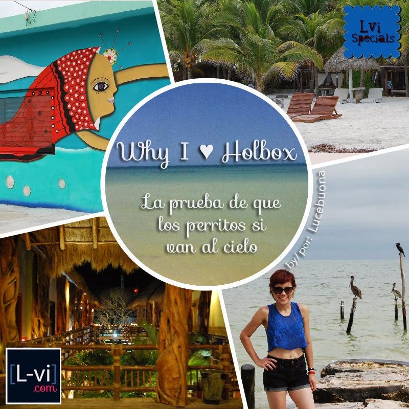 Why I ♥ Holbox: La prueba de que los perritos si van al cielo  by Lucebuona. L-vi.com