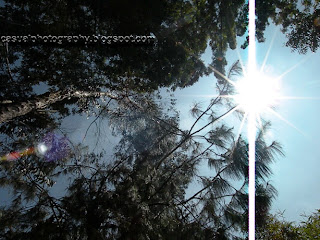 Morning-Sun-With-Clear-Bluesky-Kodaikanal