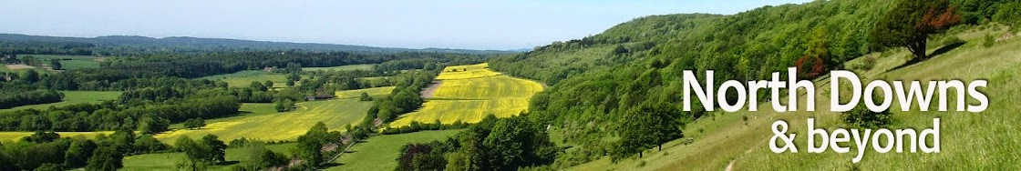 North Downs and beyond