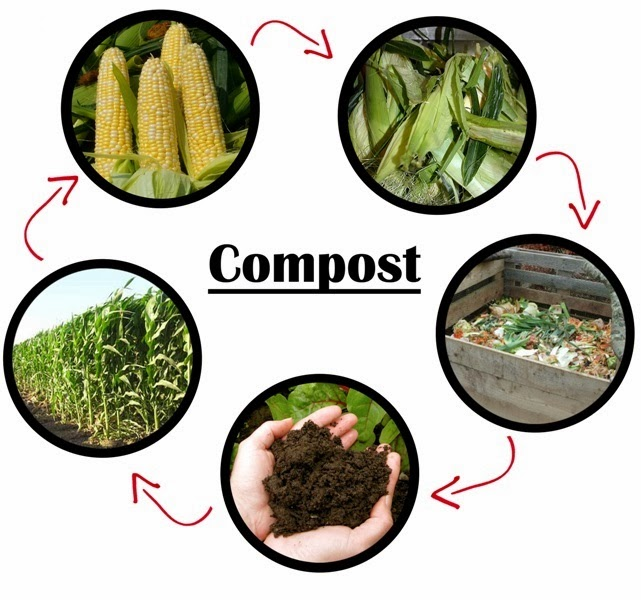 desarrollo sustentable abono orgnico