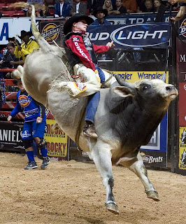 4 Bull Riding 10 of the Worlds Most Dangerous Sports