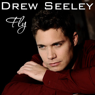 Drew Seeley - Fly Lyrics