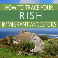 http://www.shopfamilytree.com/tracing-your-irish-immigrant-ancestors-live-webinar