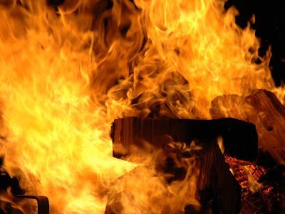 Fogo - Um Asno