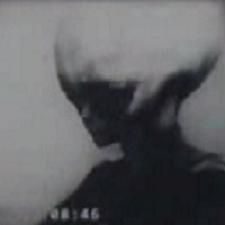 Skinny Bob, the Grey Alien?