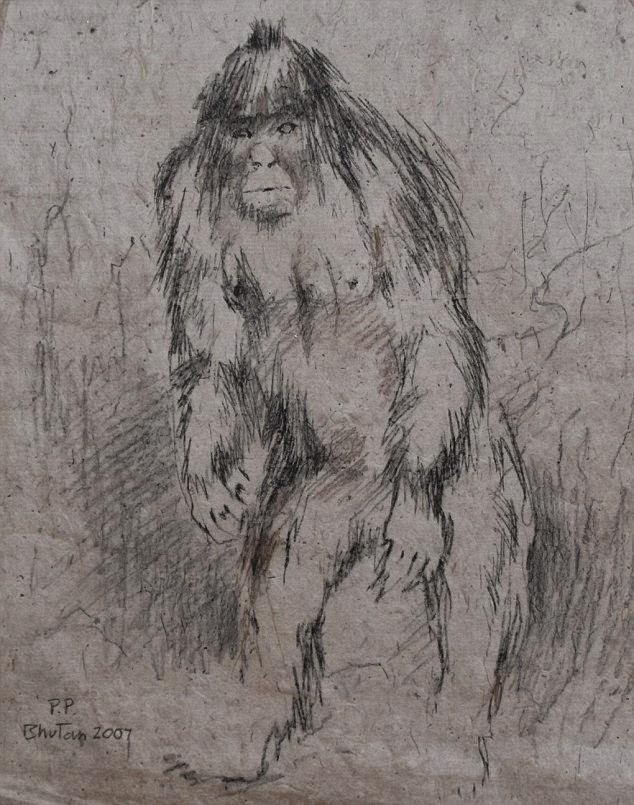 dibujo de un yeti