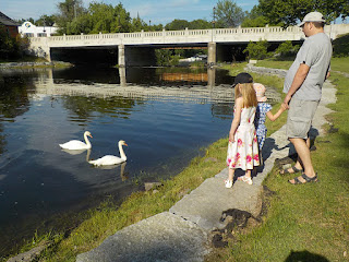 My Family Admiring Swans