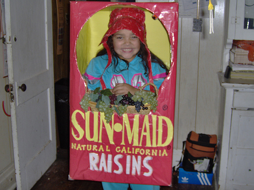 Raisin Costume