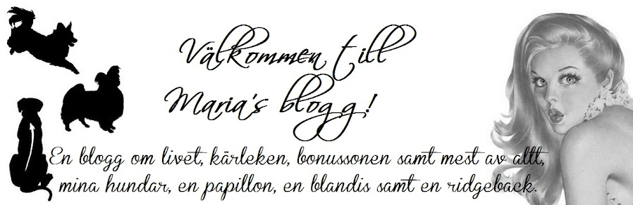 . Maria&#39;s  blogg .