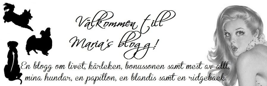 .♥ Maria's  blogg ♥.