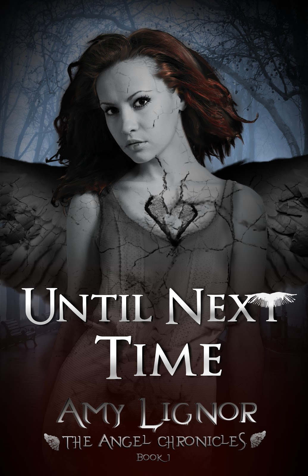 Media Type: Ebook Title: Until Next Time *series: The Angel Chronicles Book  1 Author: Amy Lignor Publisher: Tribute Books Pages: Ebook; 255