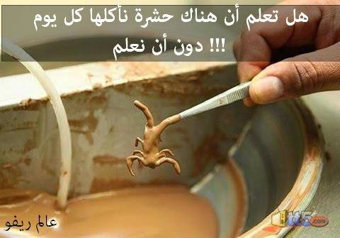 هل تعلم أن هناك حشرة نأكلها كل يوم دون أن نعلم !!!
