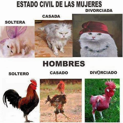 Oliva de la frontera dating english
