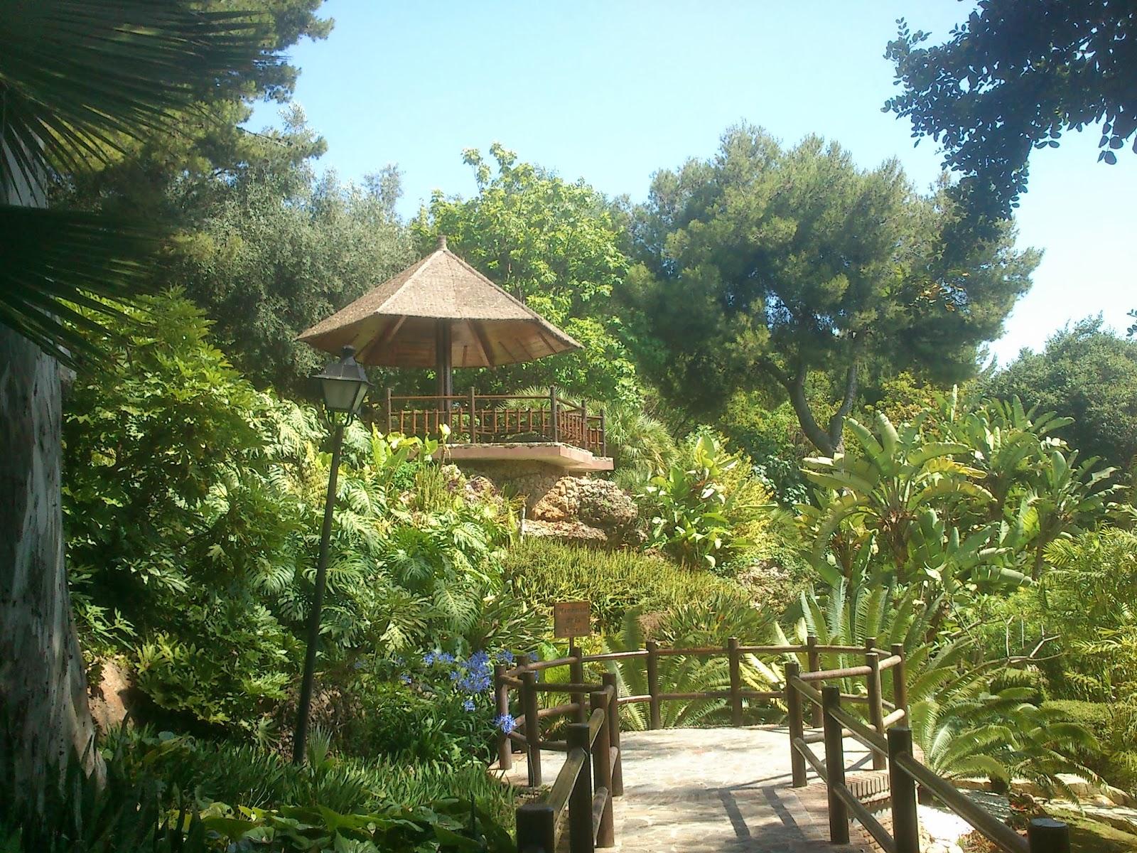 Medio ambiente urbano imfe m laga jard n bot nico for Jardin botanico torremolinos
