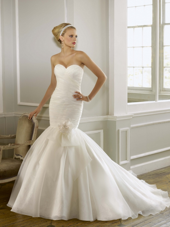 Wedding dress business wedding dresses 2012 find what for Mermaid organza wedding dresses