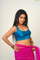 Hot Actress Kavya Singh Cleavage photos in Pink Saree