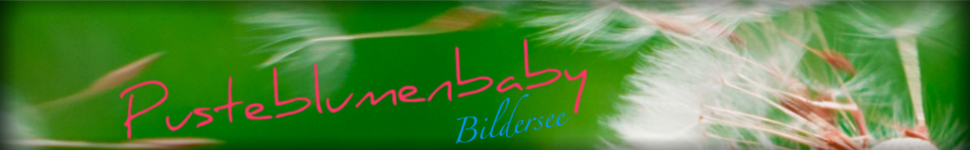 Bildersee