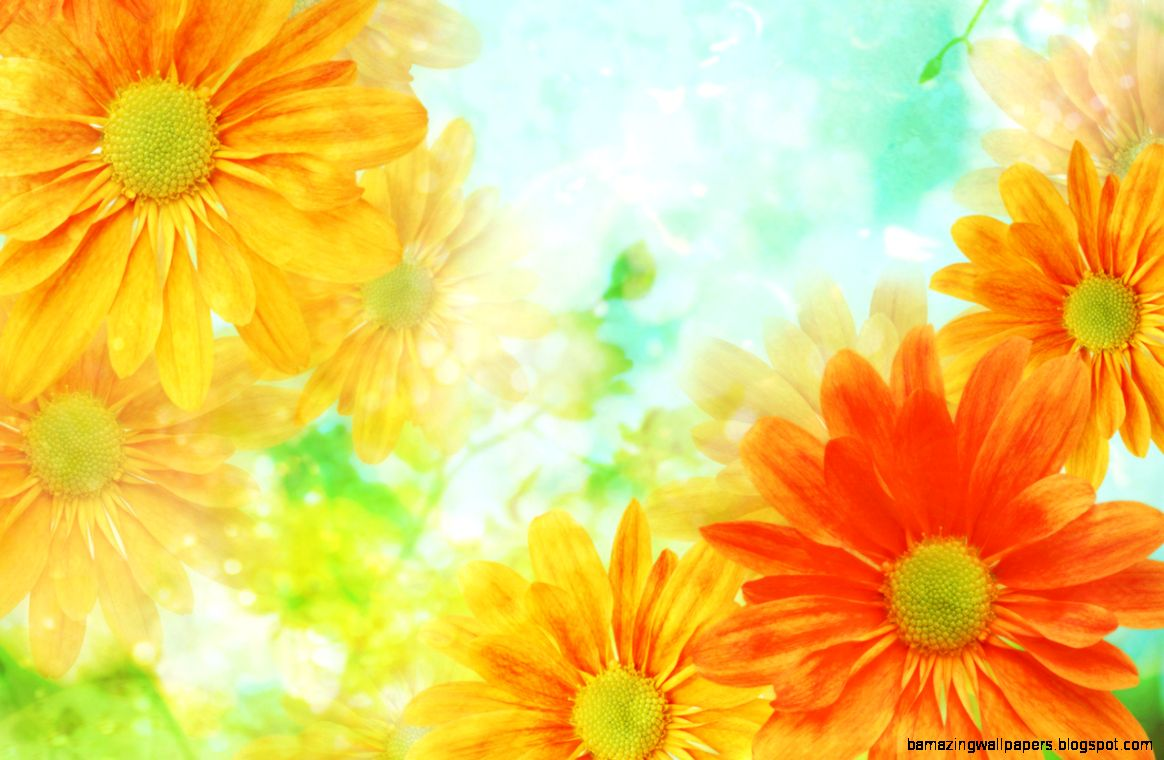 Yellow Flower Background Amazing Wallpapers
