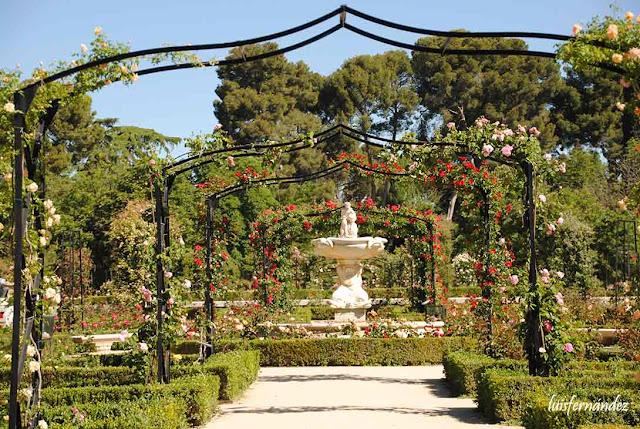 Ocio y cultura la rosaleda del retiro for Ocio y jardin