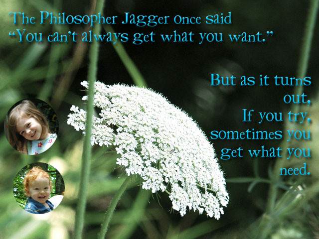 Philosopher Jagger