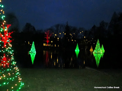 floating Christmas trees - Christmas Lights  - A Longwood Gardens PhotoJournal - Part Two on Homeschool Coffee Break @ kympossibleblog.blogspot.com