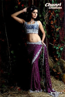 Full-Embroidered-Saree