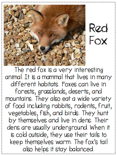 math worksheet : a day in first grade  what does the fox say finding the main  : Main Idea Worksheets For Kindergarten