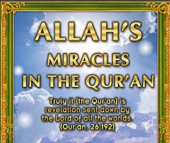 allahs miracles in the quran Would they believe that allah wants us to criticize islam and the word count is a proof the 365 days miracle there are exactly 0 word count miracles in the qur'an.