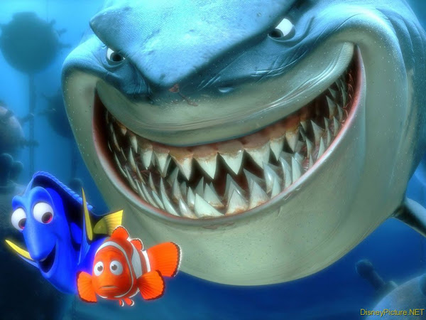 Finding Nemo Shark