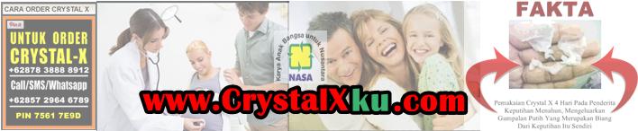 Banner Crystal X KU