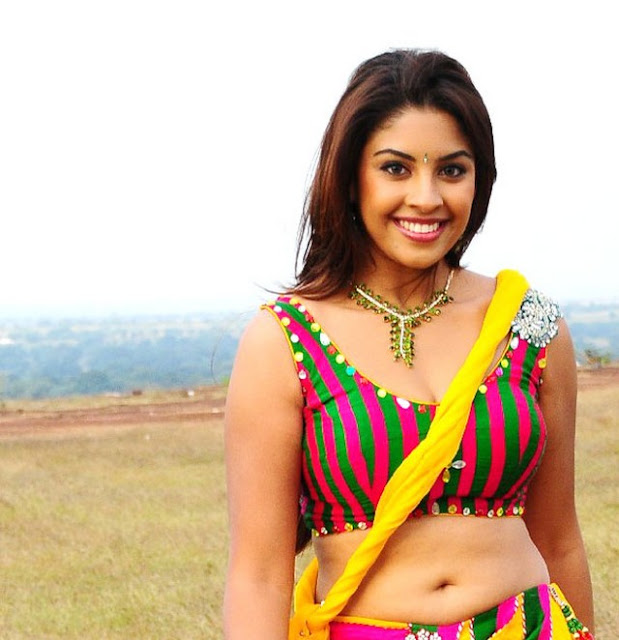 Richa_Gangopadhyay_Smile_In_Without_Saree_Naval_Photos_Pics_03.jpg