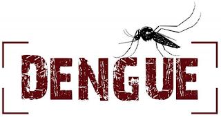 Época de frio é um perigo contra a Dengue