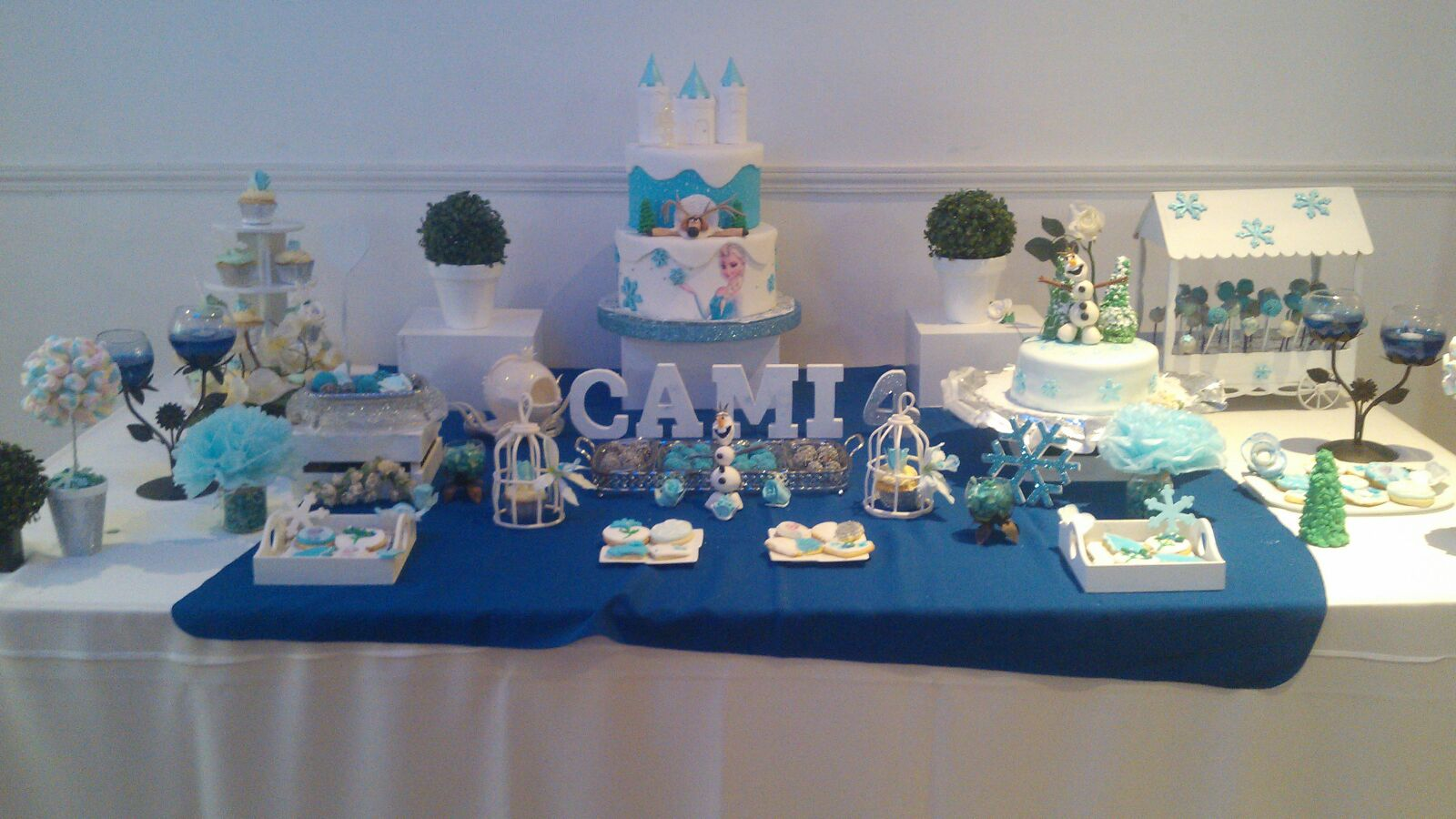 Tortas Decoradas Artesanales Mesa Tem 225 Tica Frozen